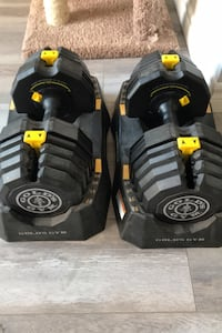 Gold Gym Select-a-Weigh dumbbell set