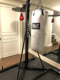 Punching bag and speed bag. Great shape King, L7B 1M6