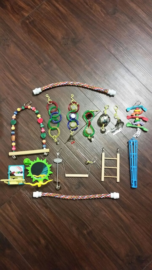 Bird Toys and Accessories (Small to Medium birds)