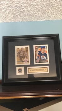 Wayne Gretzky Limited Addition Rare Picture of hockey cards!!