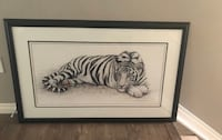 Large white tiger print  3147 km