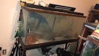 55 gallon fish tank with stand (metal frame with space underneath for another fish tank)