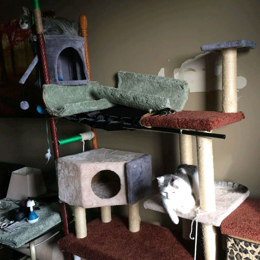 Custom made cat tree houses