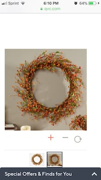 "24"" harvest pip berry wreath QVC"