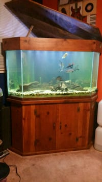 90 gallon fish tank Garden Grove