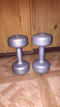 two gray fixed weight dumbbells ديربورن, 48126