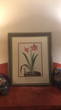 Two golden brown framed painting of red flowers Bethesda, 20814