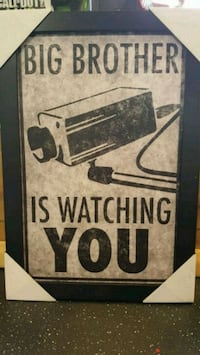 Big Brother Is Watching You Framed Art Mayfield Heights, 44124