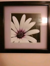 Purple and white flower painting Phil Campbell, 35581