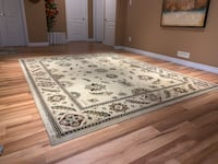 Rug - Good Condition (with FREE Delivery) London, N6K 4X8