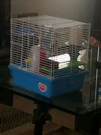 Hamster cage has all have fun today