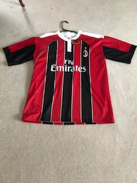 Fly Emirates Balotelli 45 Jersey Perryville, 21903