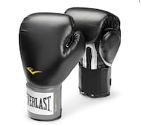 Black and gray everlast boxing gloves Oakville, L6L 6M6