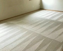 Affordable Carpet Cleaning - Best Rate in Town