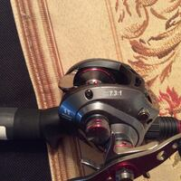 Bass fishing reel and pole Pearland, 77584