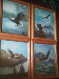 Eagle Picture Set (4 pictures)