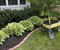 Tree services landscaping Columbia, 21045