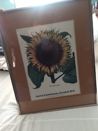 Sunflower picture frame Herndon, 20171