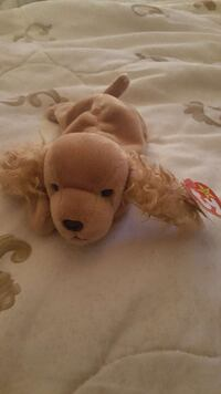SPUNKY TY COLLECTIBLE BEANIE BABY! Gaithersburg, 20879