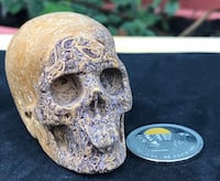 "Please see all pictures 2"" Top Carved Crystal Skulls, Realistic, Healing $30 Dollars Each Vancouver, V5N 2C7"