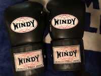 Windy Boxing Gloves  - Black  Mississauga, L5C 2J8