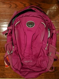 Magenta Osprey Celeste Backpack Washington, 20002