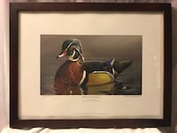 """Exclusive Edition """"Wood Duck Drake"""" Iowa Duck Stamp Print by Donnie Hughes. Framed, Numbered, and Signed by the artist"""