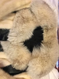 Vintage mink fur coat- redesign make fur stole of collarMoving.. not available after Friday!!