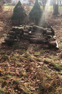 Firewood for the winter, hard wood only