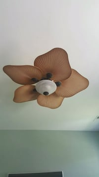brown and white 5 blade ceiling fan Lexington, 29072