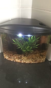 3.5 L fish tank inclusive filter and LED lighting.
