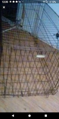 3 1/2 tall 5 6 long dog kennel