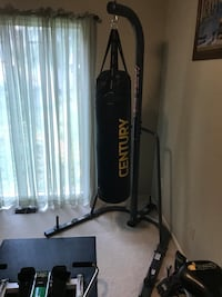Punching Bag, Stand, and Gloves.