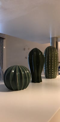 Cute Cactus Set Home Decoration from IKEA Greater Vancouver, V6S
