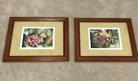 Set of 2 solid wood framed butterfly collectible prints  Sterling, 20166