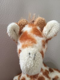 SOFIE THE GIRAFFE  St. Thomas, N5P