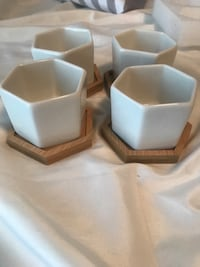 4 succulent pots with coasters  Lynchburg, 24502
