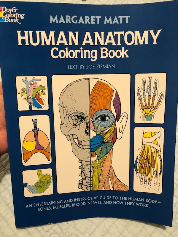 Used Human anatomy coloring book for sale in Raeford - letgo