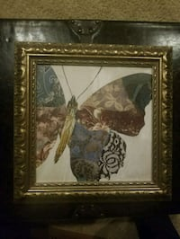 Framed (Gold) Butterfly Picture Accokeek