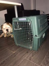 Dog crate, 30-60 lb dog Surrey, V3V 5E8