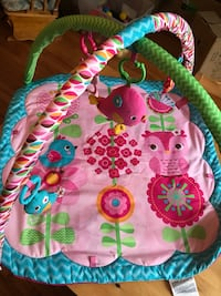 baby's multicolored activity gym Hampstead, H3X 2E8