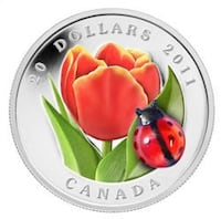 The Famous LADY BUG coin. 784 km