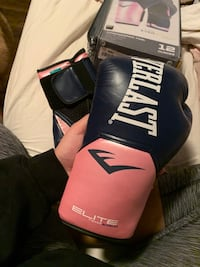 Everlast boxing gloves *NEW* Milton, L9T