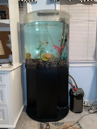 30 gallon Fish tank with all the supplies