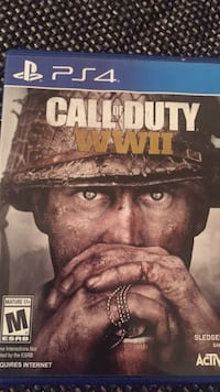Sony PS4 Call Of Duty WWII case
