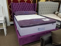 Queen Purple velvet platform bed frame College Park