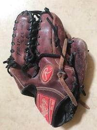 Rawlings Baseball Glove Trapeze Gold Glove Series  Spring Hill, 34606