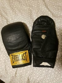 Everlast boxing gloves  Hamilton, L8H 1C7