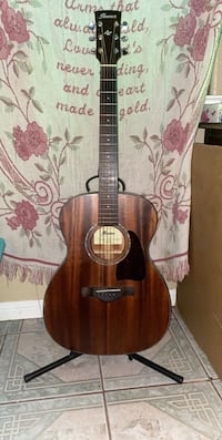 Ibanez guitar with stand