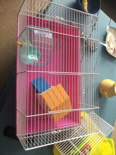 pink and grey metal hamster cage